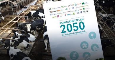 Foto: pixabay, Abbildung: Klima-Allianz Deutschland; Composing