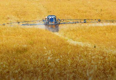 BUND fordert Herbizid-Ausstiegsprogramm