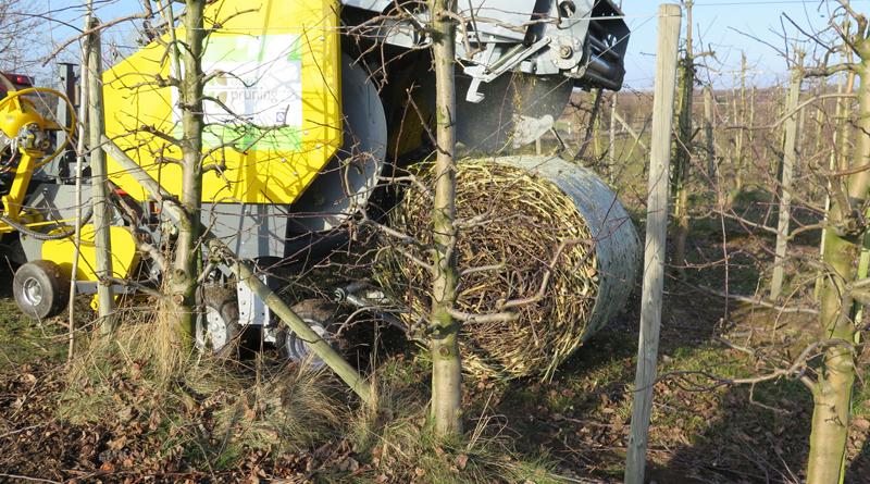 Neue Ballenpresse macht Schnittholz-Logistik einfacher