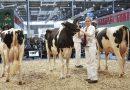 EuroTier 2016: Impulsgeber für die Tierhaltung
