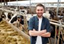 Ausbildungsstellen: Zu wenig Fachkräfte in der Landwirtschaft