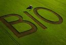 Bio: BÖLW-Vorsitzender verteidigt Entwicklung der Branche