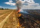 Brandgefahr: Das muss bei der Ernte beachtet werden