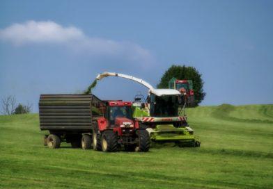 Agrarbericht: So geht es der Landwirtschaft wirtschaftlich