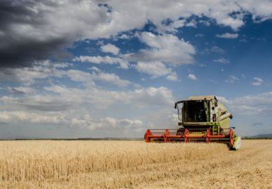 Kommission soll Zukunft der Landwirtschaft sichern