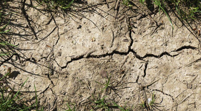 dürreversicherung